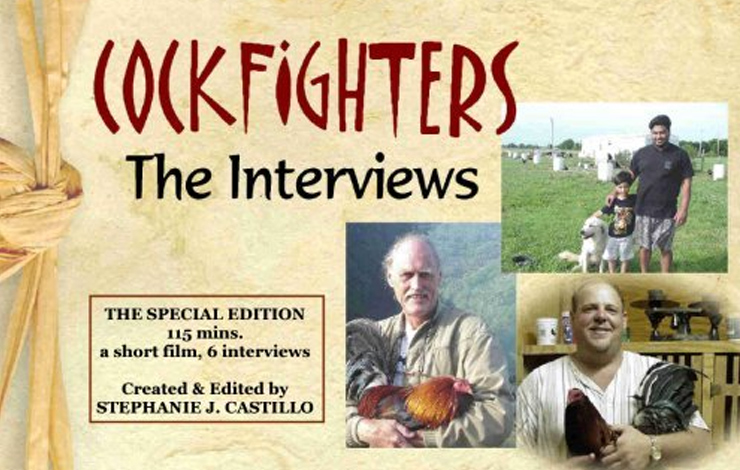 Packaging for Stephanie Castillo's DVD package 'Cockfighters: The Interviews.' Courtesy of Stephanie Castillo.