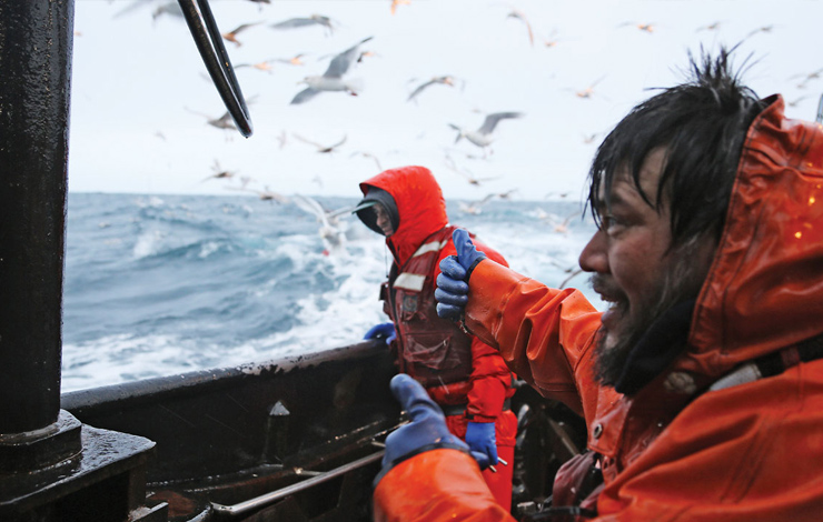 Swimming with Sharks: Documentary on the Rough Seas of ...