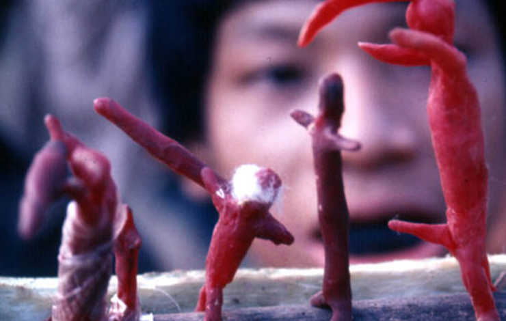Yanomami villagers depicted French anthropologist Jacques Lizot as a wax figure with a large protruding penis. Filmmaker José Padilha turned over the testimony of sexual abuse in <em>Secrets of the Tribe to Interpol</em>