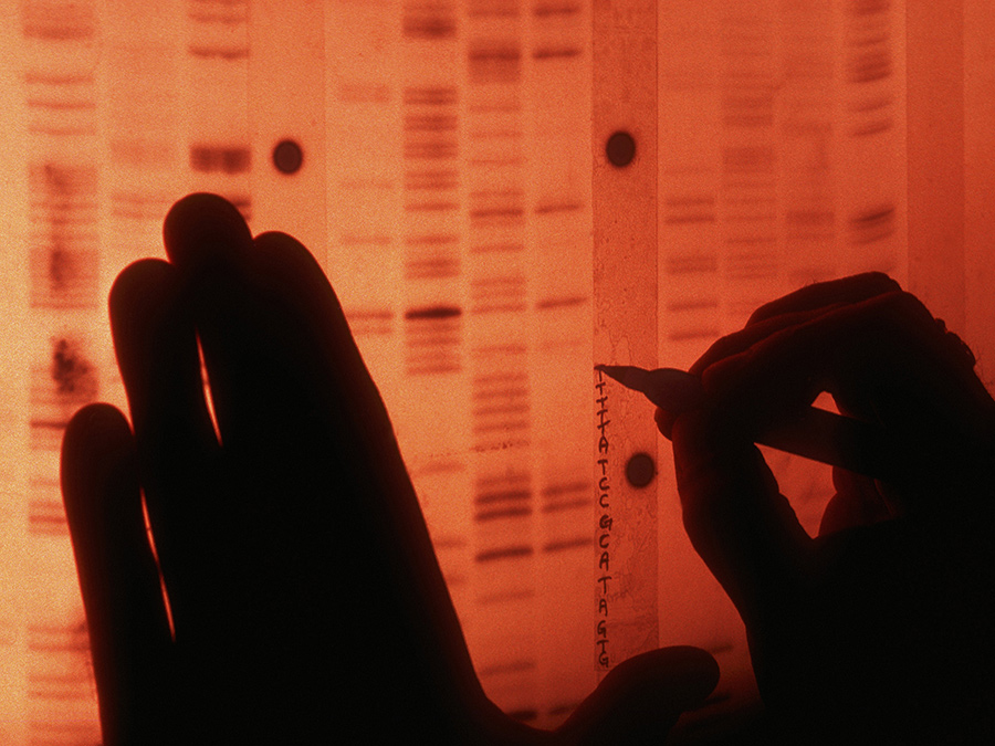 A scientist labels each protein in the radio nucleotide sequence of human genes to create a unique DNA profile. From 'Cancer: The Emperor of All Maladies', which premieres March 30 on PBS. Courtesy of Dan McCoy—Rainbow/Science Faction/Corbis