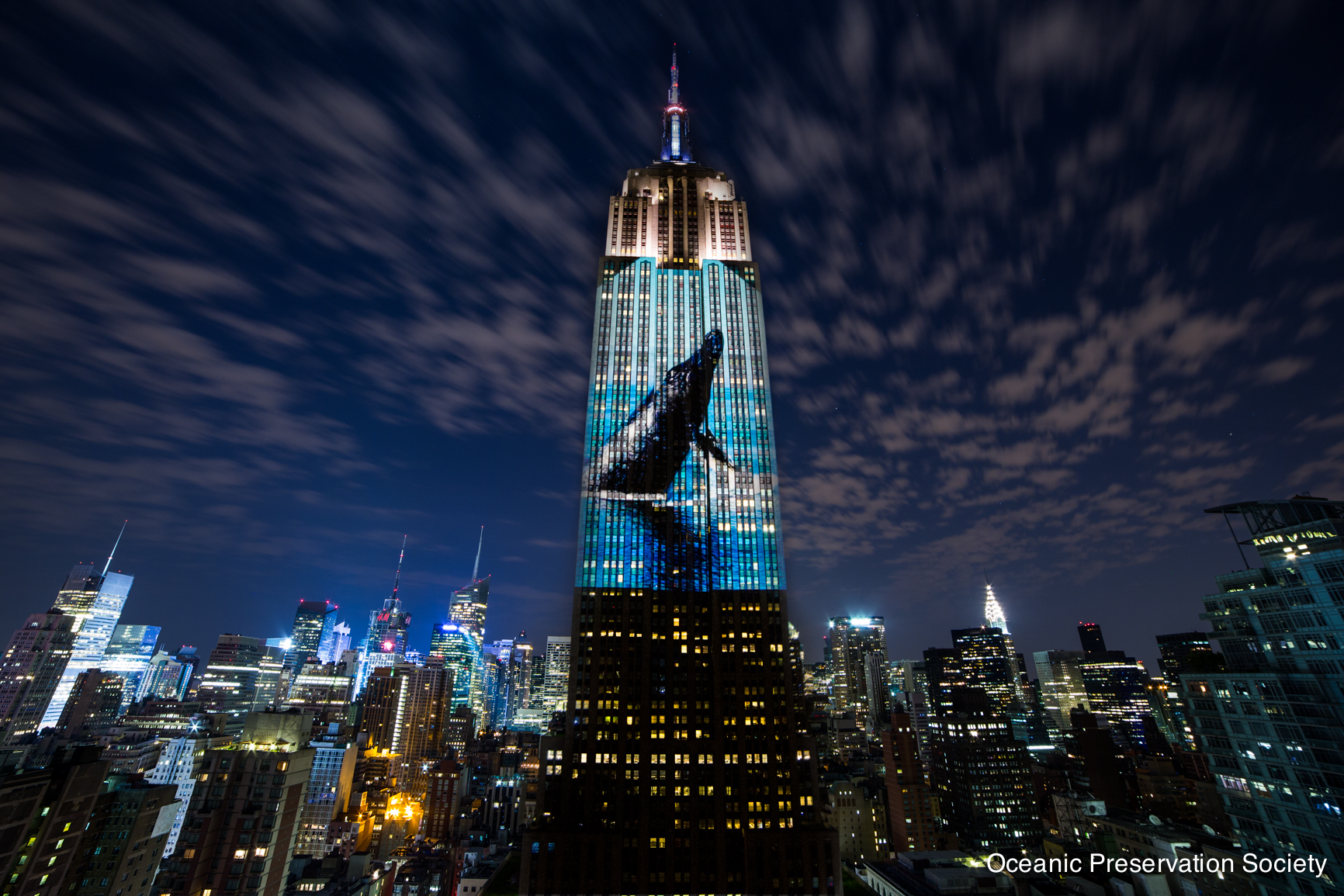 From Louie Psihoyos' 'Racing Extinction.' Photo: Oceanic Preservation Society