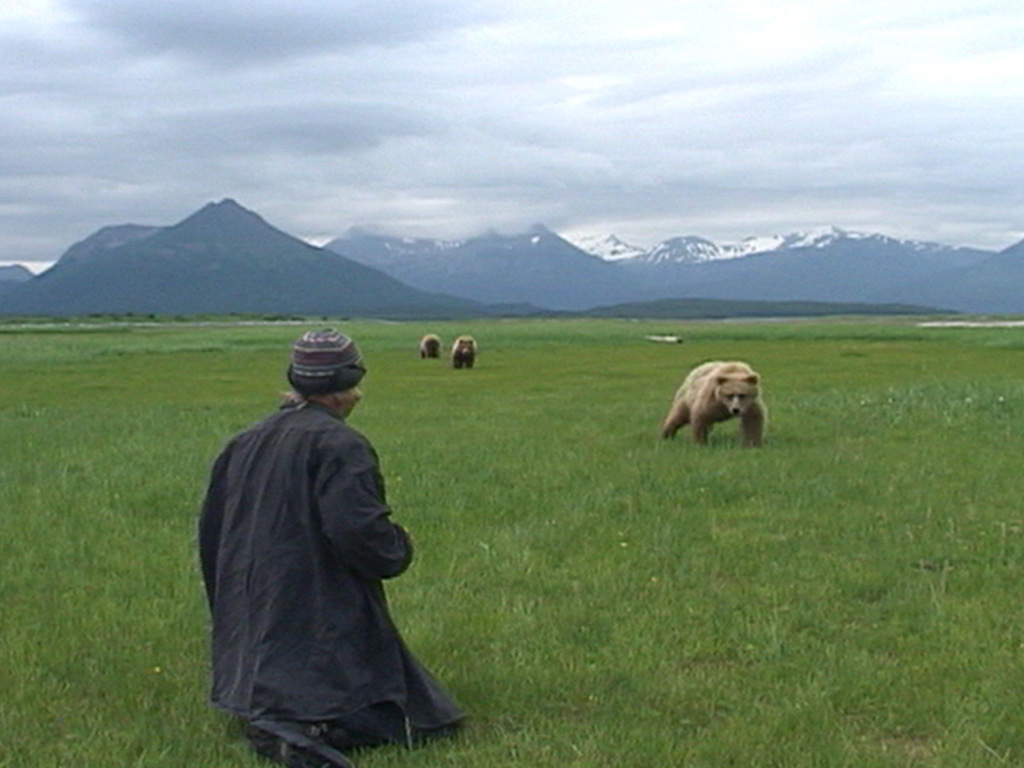 From Werner Herzog's 2005 film 'Grizzly Man.' Courtesy of Lionsgate