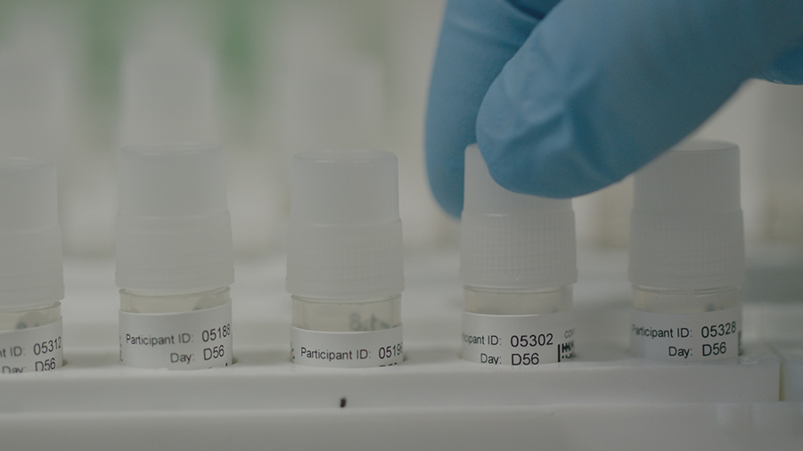 Clinical trial samples being prepared for testing in the laboratory at the University of Oxford's Jenner Institute, UK. From 'A Race for the Vaccine' Courtesy of CNN
