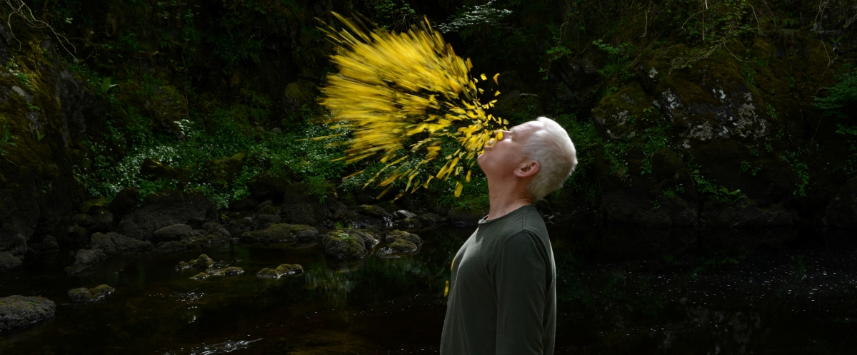 "Andy Goldsworthy in Thomas Riedelsheimer's ""Leaning into the Wind,"" a Magnolia Pictures release. Photo courtesy of Magnolia Pictures. Photo: © Thomas Riedelsheimer, all rights reserved."