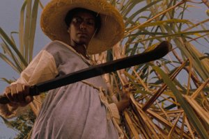 A Black woman farmworker stands against a sugarcane plant with a sickle in her hand in Haile Gerima's 'Sankofa'