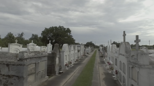 rows of graves in a cemetery