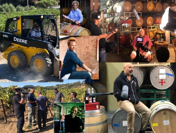 Various pictures of the wine making process collaged together.