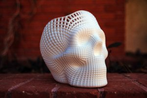 Image of a 3D printed skull.