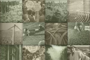 Collage of urban and rural landscapes