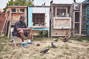 A middle-aged Black man sits in his backyard before his large set up of Pigeon coups