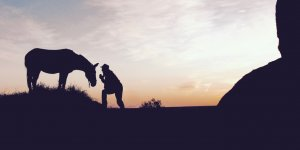 a man leans over to his horse, both silhouetted in the fading sunset.